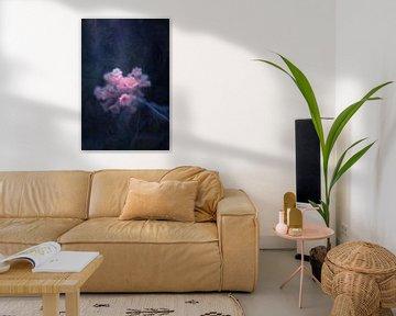 frostiges Pink