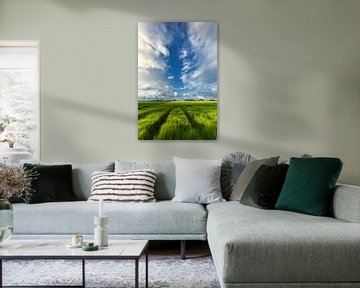 Zomerse luchten boven de graanvelden in Groningen van Bas Meelker