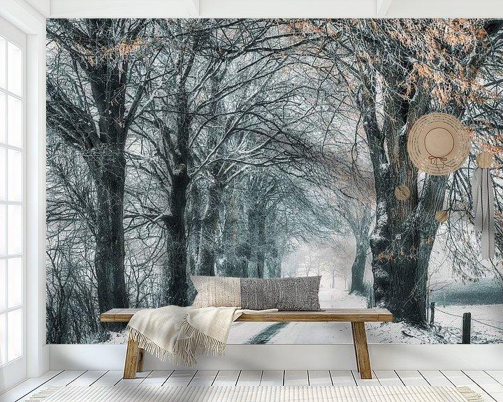 Beispiel fototapete: Wintermärchen von Rik Verslype