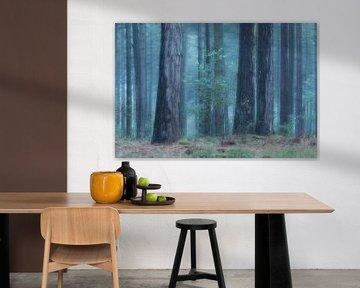 koelte in het bos van Ria Bloemendaal