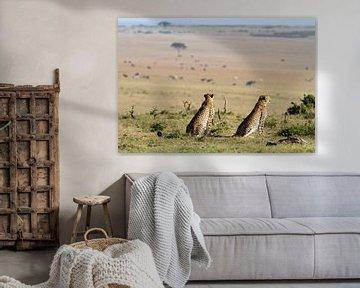 Geparden Ausblick von Angelika Stern