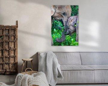 Asiatischer Elefant mit Kalb in Sri Lanka von Julie Brunsting