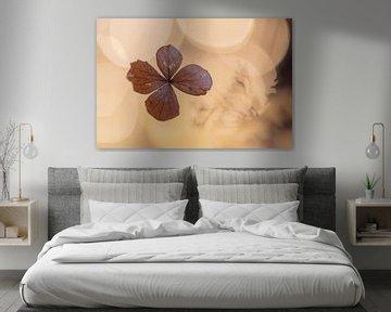 Hortensienblatt von Tania Perneel