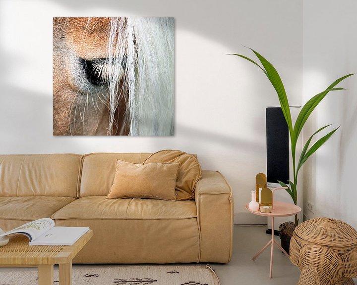Beispiel: Ojo: het oog van de haflinger von Artstudio1622