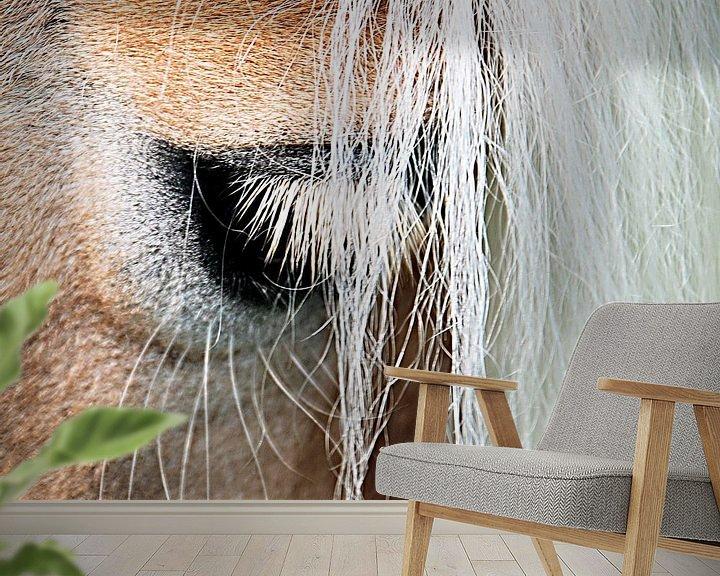 Beispiel fototapete: Ojo: het oog van de haflinger von Artstudio1622