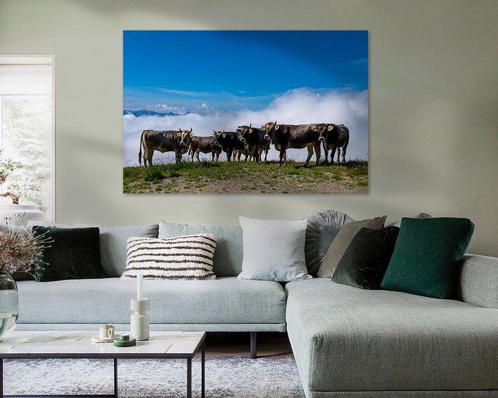 Beispiel: Kühe von Eliberto