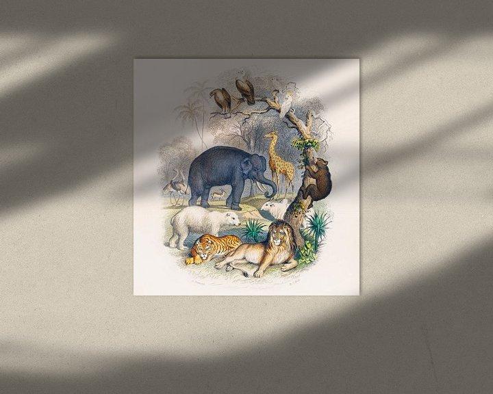Beispiel: Eine Geschichte der Erde und der belebten Natur, Oliver Goldsmith