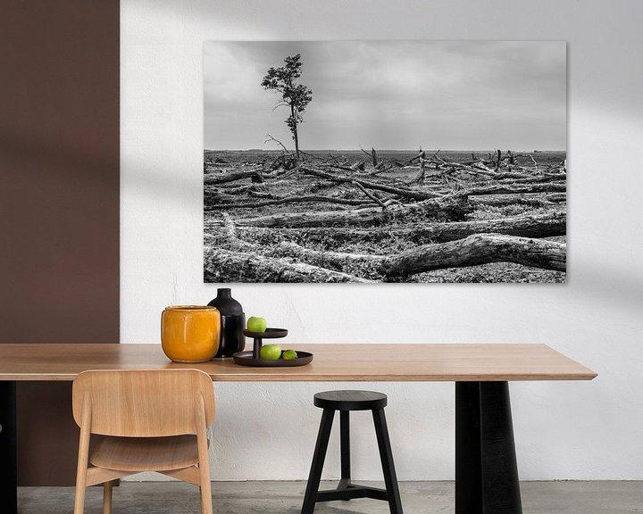 Sfeerimpressie: Eenzame boom Oostvaardersplassen van Catstye Cam / Corine van Kapel Photography
