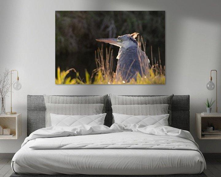 Beispiel: Der Blaureiher ist im Sonnenschein von Petra Vastenburg