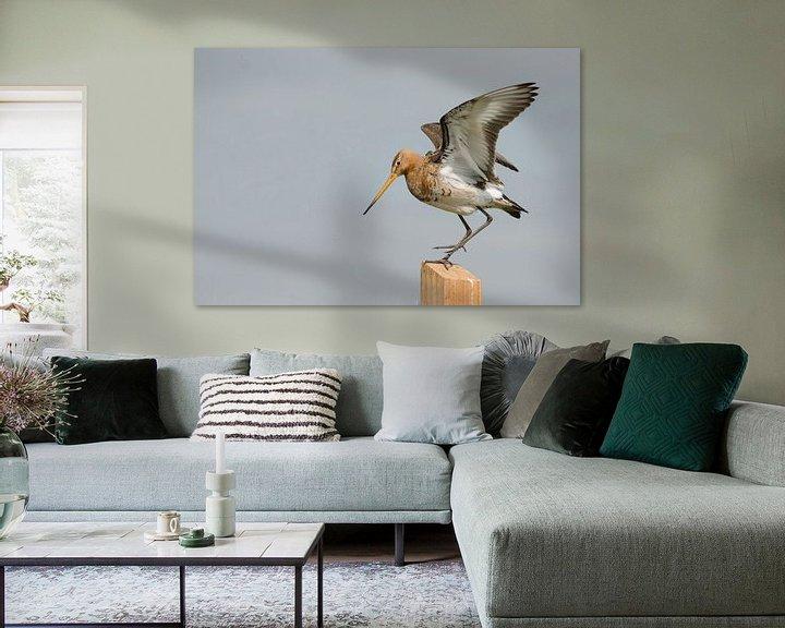 Beispiel: Uferschnepfe auf Stelzen streckt ihre Flügel aus von Petra Vastenburg