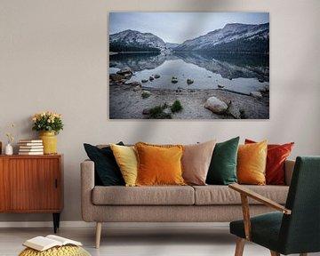 Yosemite Lake van Eric van Nieuwland
