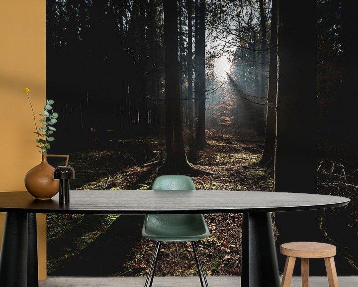 Sfeerimpressie behang: Zonnestralen in het donkere bos van Fotografiecor .nl
