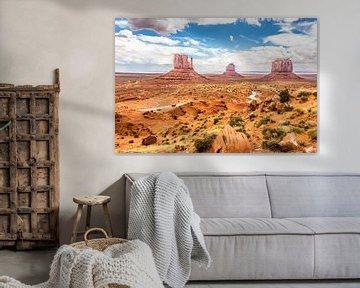 Monument Valley von Eric van Nieuwland