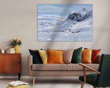 Ruige winterse schoonheid