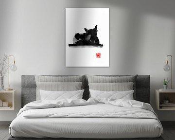 kattenrug van philippe imbert
