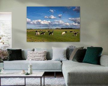 Kühe auf einer Wiese im Freien von Bram van Broekhoven