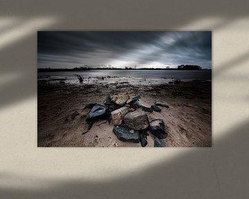 Stormachtig weer aan de rivieroever (Pannerden, Arnhem) van Eddy Westdijk