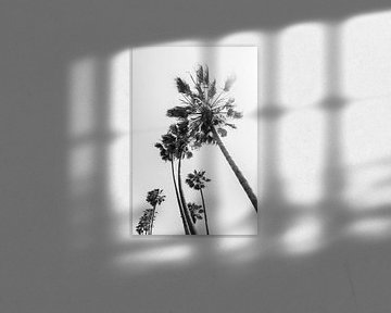Palmen im Sommer von Melanie Viola