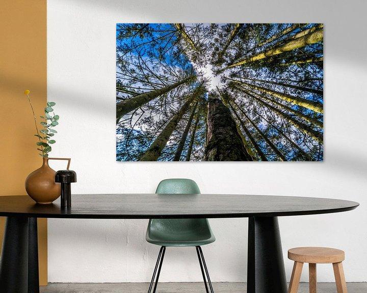 Beispiel: Bäume von Fred Leeflang