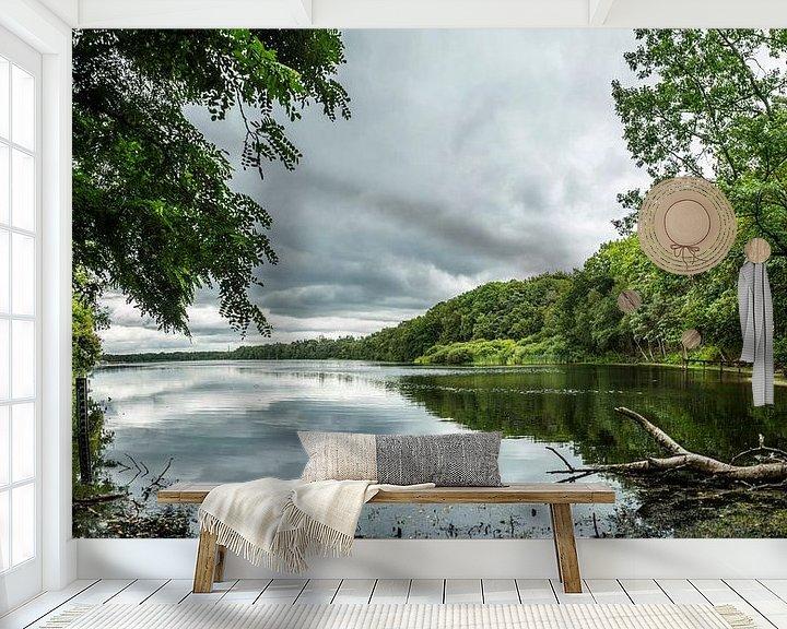 Beispiel fototapete: See im Wald von Fred Leeflang