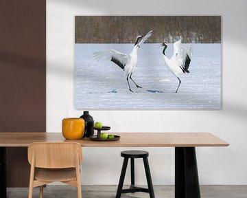 Japanse Kraanvogels V van Harry Eggens