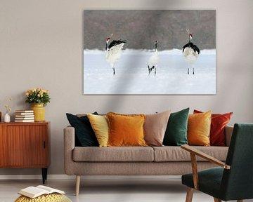 Japanse Kraanvogels VII van Harry Eggens