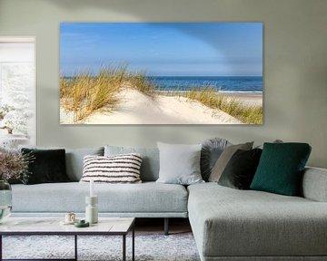zicht op de duinen van Christoph Schaible