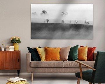 Bäume im Nebel von Lars Korzelius