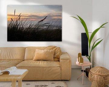 Duinen van Maxpix, creatieve fotografie