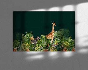 Jungle met giraffe, zebra en vogels. van Studio POPPY
