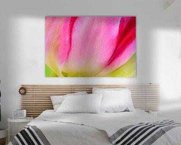 Blütendetails (1) von Monika Scheurer