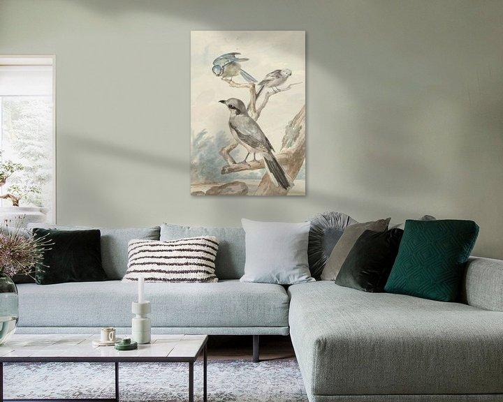 Beispiel: Drei Vögel: eine Schwanzmeise, eine Blaumeise und ein Klapper oder der Große Klauenmann, Aert Schoum