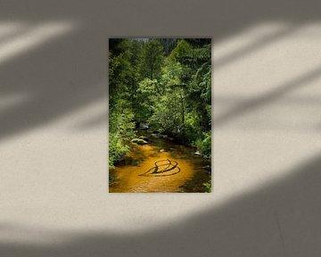 Plaatcompositie_natuur-kunstinstallatie van Matthias Würfel