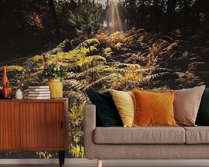 Sfeerimpressie behang: Bos varens in het stralende zonlicht van Fotografiecor .nl