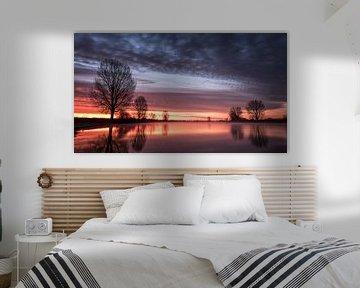 Purple dawn van Lex Schulte