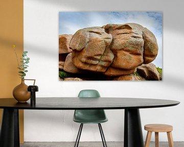 Un rocher en forme de deux faces. WoutKok One2expose. sur Wout Kok