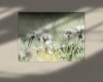 Frühling von Marije Rademaker