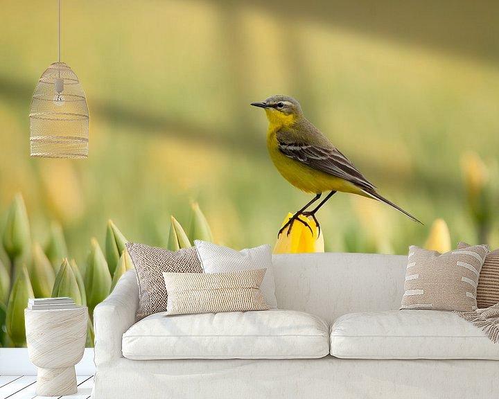 Beispiel fototapete: gelb bis gelb von Ina Hendriks-Schaafsma