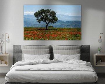 Baum im Mohnfeld von Daan Kloeg