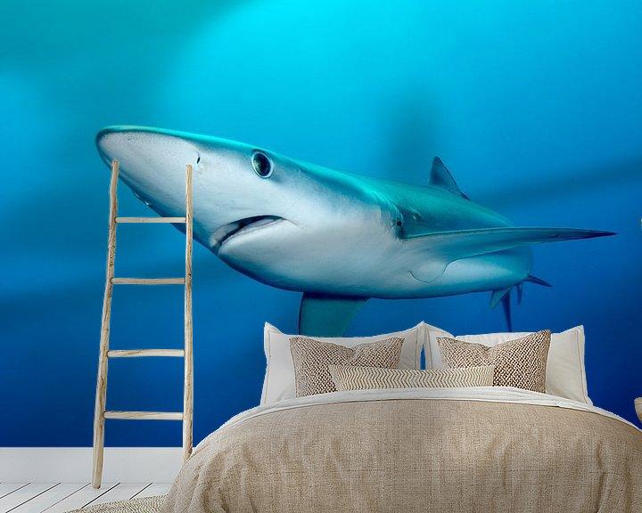 Sfeerimpressie behang: Blauwe haai in Zuid-Afrikaanse wateren van Filip Staes