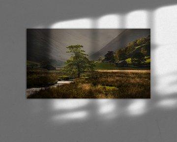 Schilderachtig mooi licht in Martindale Valley in het mooie Lake District in Engeland van Jos Pannekoek