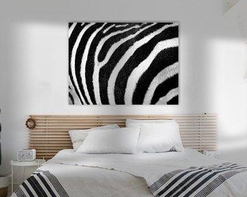 Zebrahaut von Fabian  van Bakel