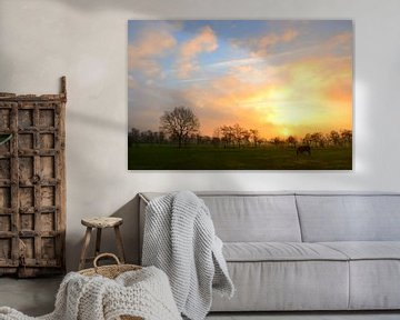Cheval au soleil levant, Doezum, Groningen sur Mark van der Werf