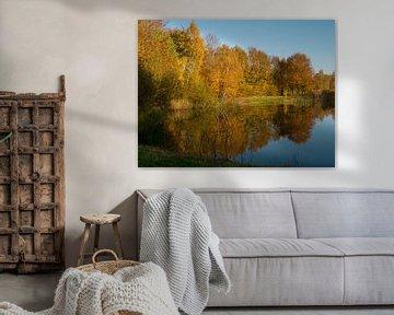 herfstbomen weerspiegeld in het water van Evelien Brouwer