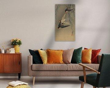 Drei Rotbürzelschwalben im Tauchflug von Ohara Koson