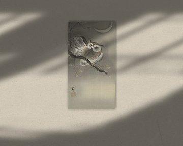 Waldohreule in Ginkgo von Ohara Koson