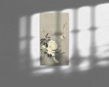 Vogeltje op tak bij bloeiende witte pioenroos van Ohara Koson