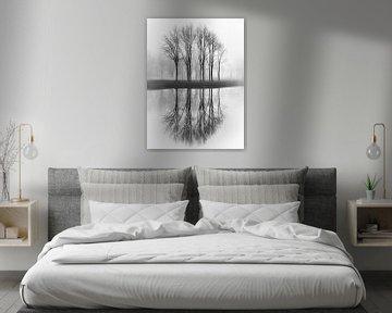 Gespiegelde bomen van Karel Ton