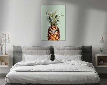 Ananas Eule von Jonas Loose