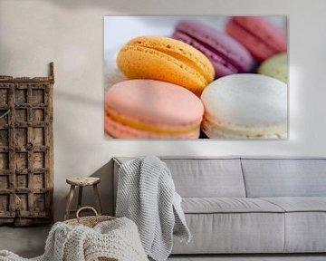 macarons français sur Dani Teston